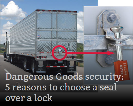 Security Seals Versus Locks