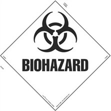 Biohazard, Square-On-Point Markings