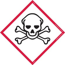 Skull and Crossbones (Severe Toxic)