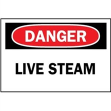 Danger, Live Steam